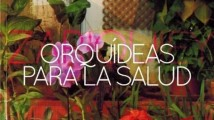 Orquídies para la salut